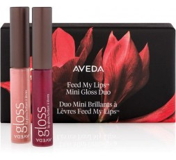 aveda kit gloss