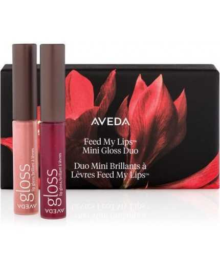 Aveda mini gloss duo